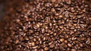 beans_n_roaster